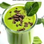 vegan shamrock shake with chocolate chips
