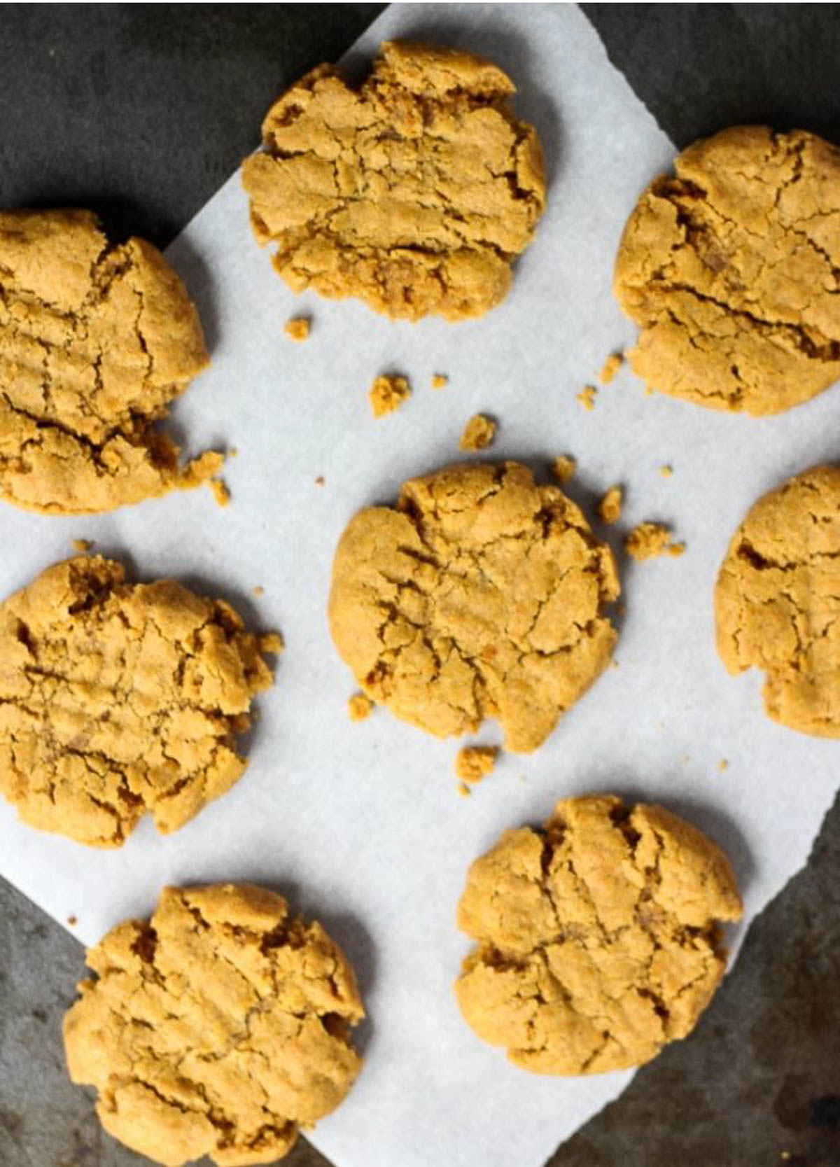 Overhead of peanut butter cookies cooling on baking sheet.