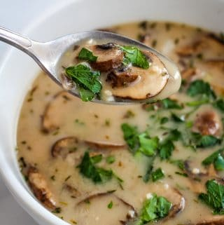spoon of soup