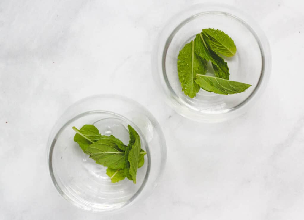 mint leaves on the bottom of two glasses