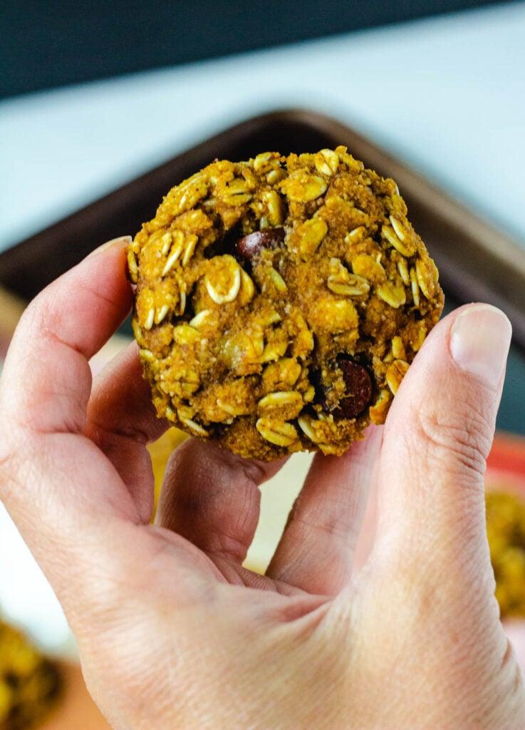 hand holding pumpkin chocolate chip cookie