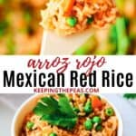 arroz rojo, Mexican red rice on spoon and in small white bowl